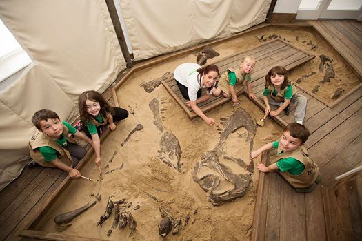 Dinosaur Discovery at Dublin Zoo - Kids Only