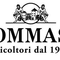 Taste of Wine - Tommasi (Veneto)