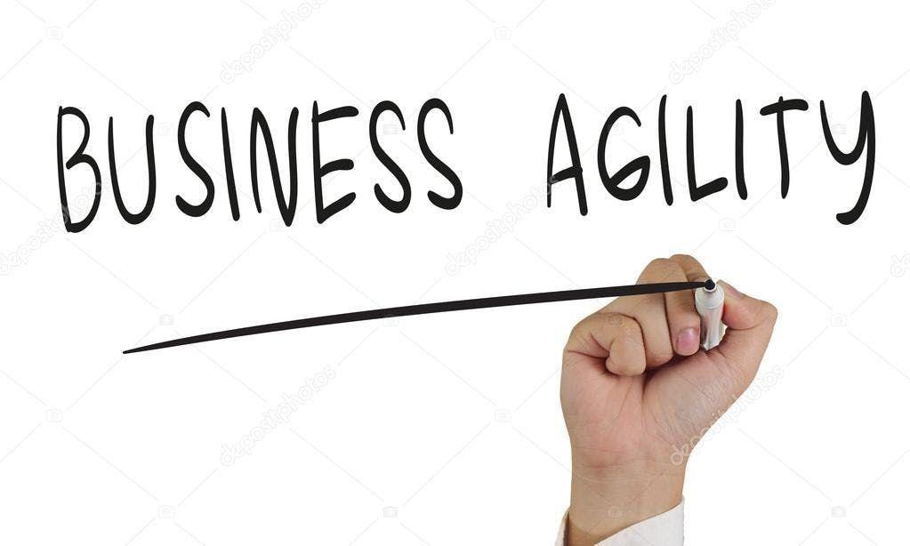 Business Agility 2019
