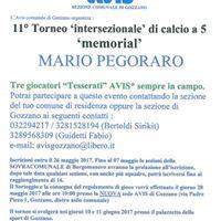 11 Torneo intersezionale di calcio a 5 memorial MARIO Pegoro