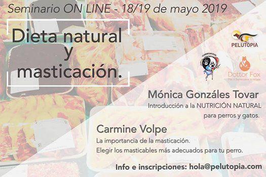 Seminario on line de alimentacin natural y masticacin.