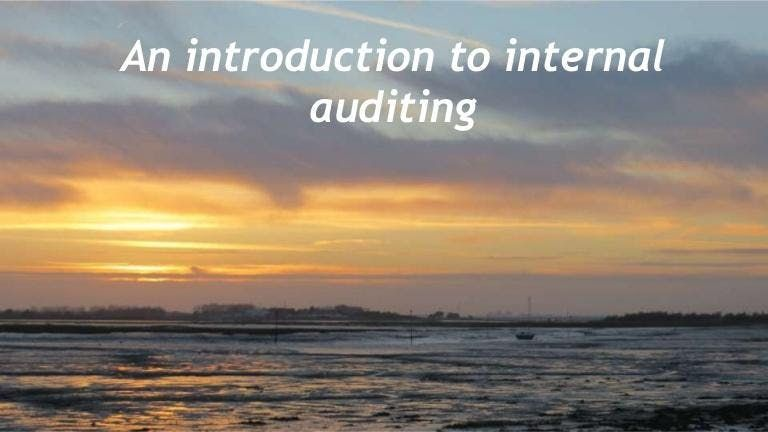 Internal Audit 101 Introduction to Internal Auditing - Houston TX - Energy Corridor - Yellow Book CIA & CPA CPE