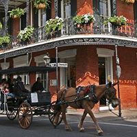 Collettes Spotlight on New Orleans