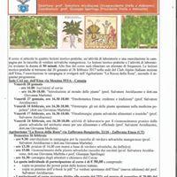8 Corso di Etnobotanica Etnea