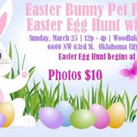 Easter with Bella Pet Pics and Egg Hunt