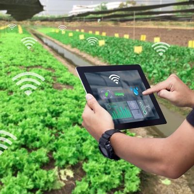 Develop a Successful Smart Farming 2.0 Tech Startup Business Glasgow - Entrepreneur Workshop - Bootcamp - Virtual Class - Seminar - Training - Lecture - Webinar - Conference
