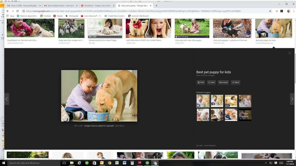 Princess and Puppy Parties (Boys & Girls events)