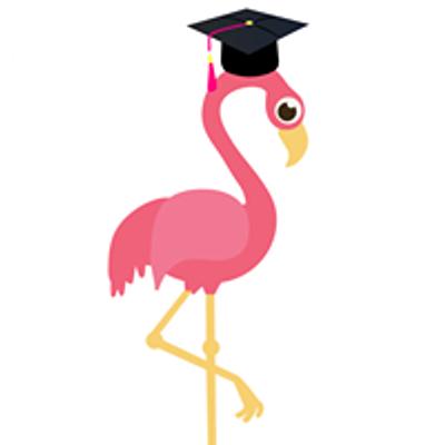 Project Flamingo Student Initiative- UCT