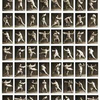 Taichi Estilo Yang Forma aplicaciones y mtodos de entreno