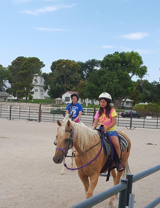 Fall Horseback Riding Lessons