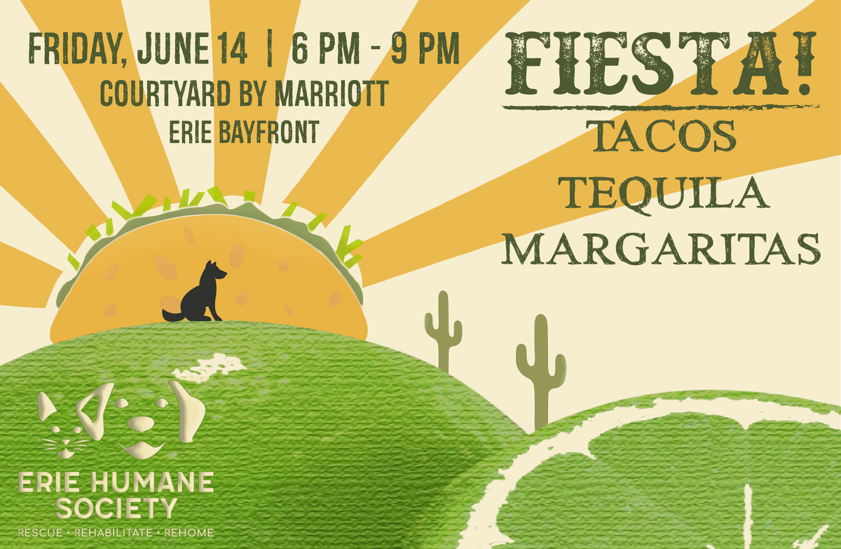 FIESTA! Tacos, Tequila, & Margaritas 2019 at Courtyard by