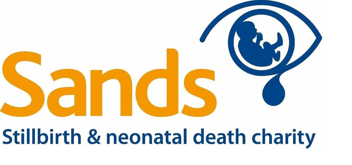 Sands Bereavement Care Training for Health Professionals Belfast 15th April 2019