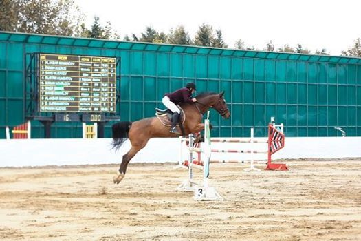 Arzu Cup Show Jumping