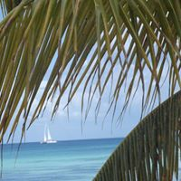 Trip to paradise Punta Cana DR