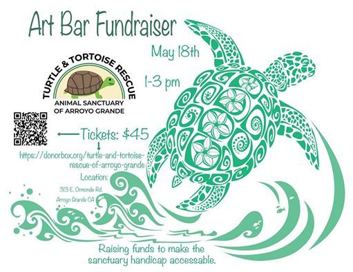 Art Bar at Turtle and Tortoise Rescue of Arroyo Grande