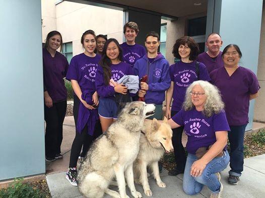 Vaccine Clinic- San Jose Animal Shelter at Pet Awareness and