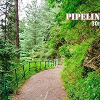 Pipeline Hike