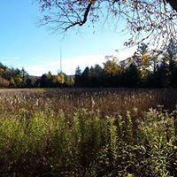 Frassati Catholic Fellowship Fall Hike in Gatineau Park