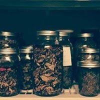 Workshop Herbal Medicine for Stress and Trauma