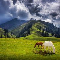 3 Days Trip to Naran Shogran &amp Babusar Top