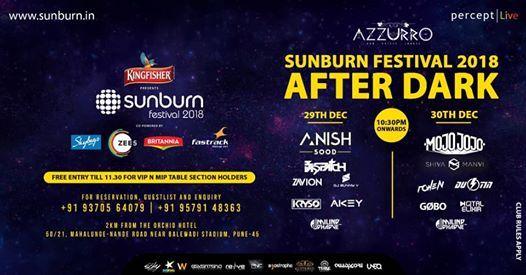 Sunburn Festival 2018 AfterDark Parties - Pune