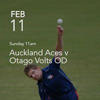Auckland Aces v Otago Volts