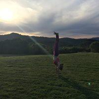 Break it Down The Handstand