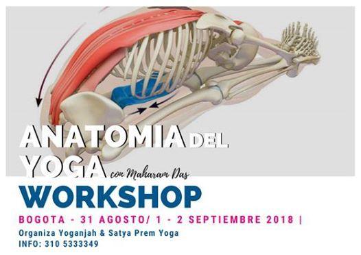 Anatomía para el Yoga Workshop Practico y de Alineamiento at ...