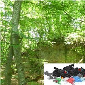 Nettoyage Citoyen et sensibilisation au tri en milieu naturel