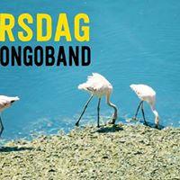Bongotorsdag 4 med Bosses Bongoband