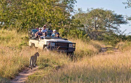 Gratis rejseforedrag Sydafrika med dansk rejseleder