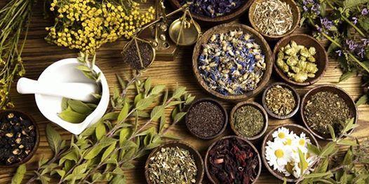 Plant Based Wellness & Herbal Healing Retreat (NoVA  DC)