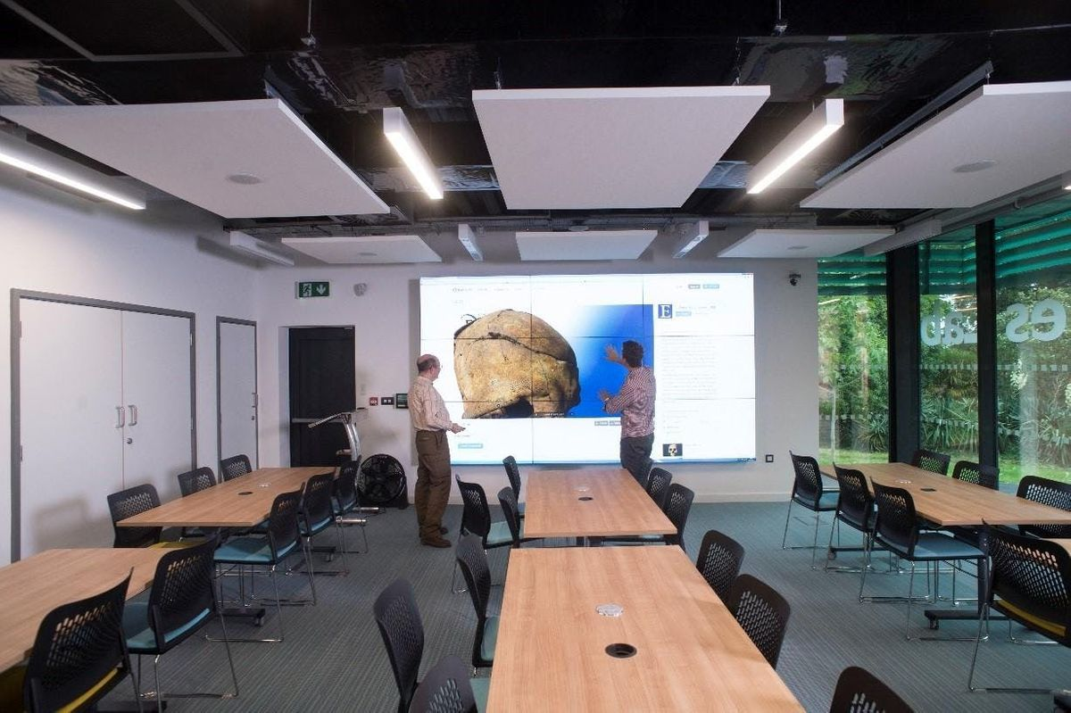 Video wall training for teaching and research