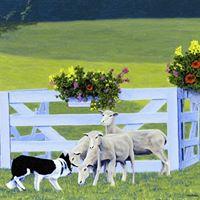 Kingston Sheepdog Trials