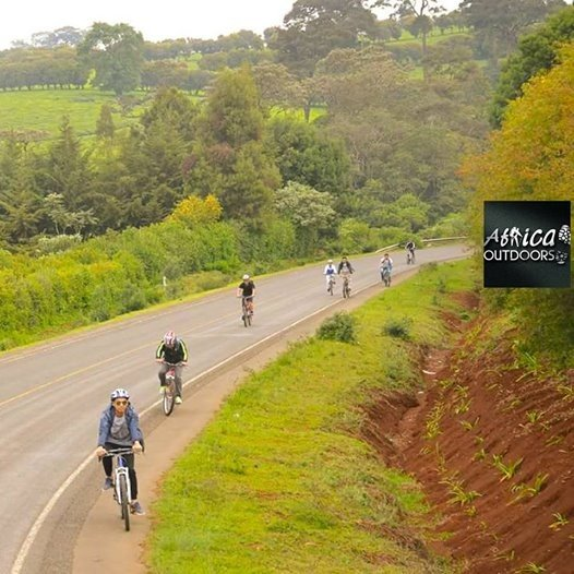 Cycling 103Limuru Green tea Farm