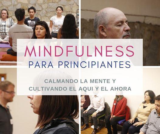 Programa Mindfulness para Principiantes - 6 sesiones