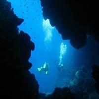 Weekend Diving