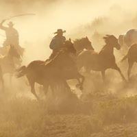 Wild Wild West Weekend