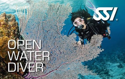 Perth - Open Water Diver Course