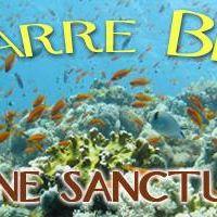 We are SCUBA Diving Navarre Beach Marine Sanctuary