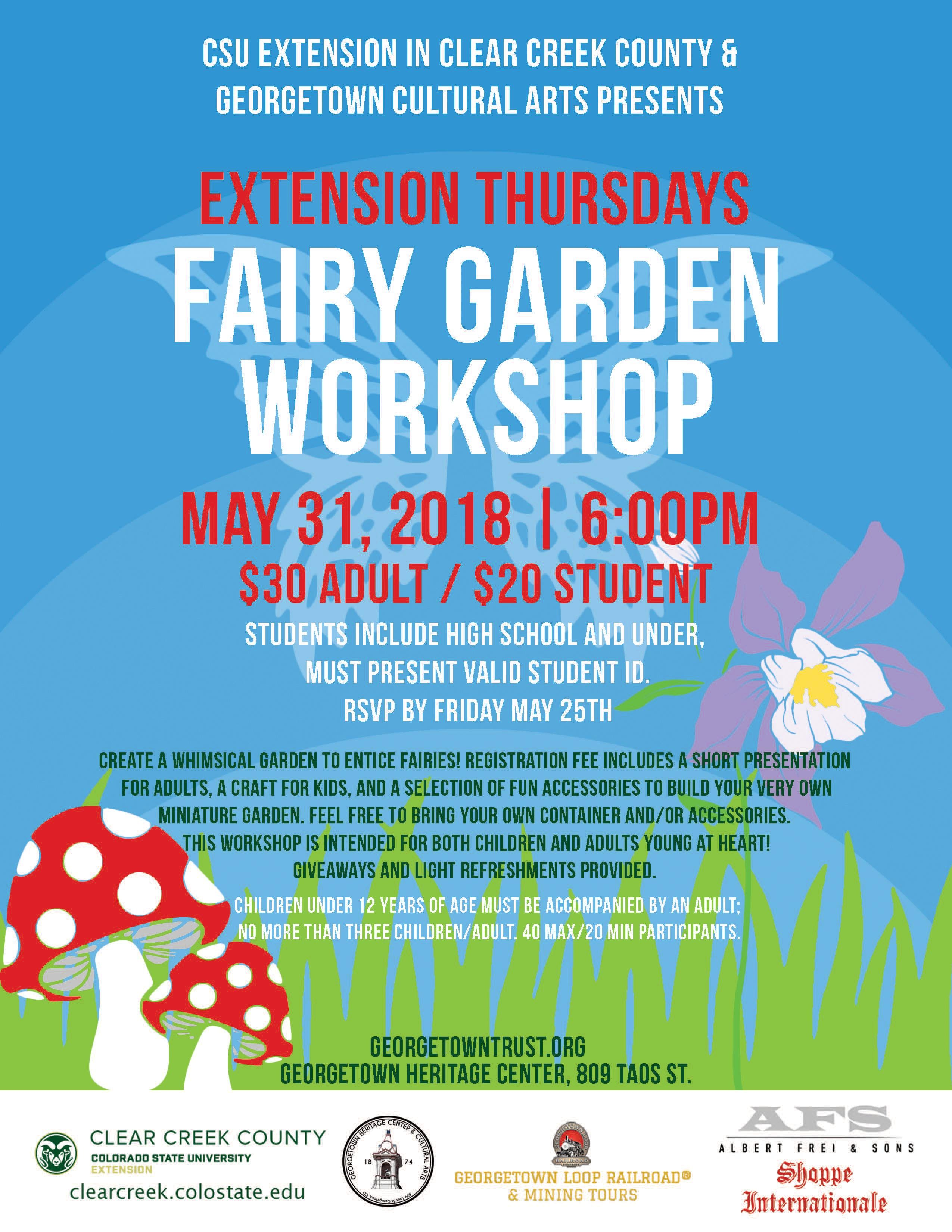 Merveilleux Fairy Garden Workshop