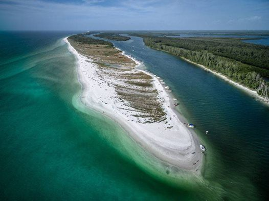 Keewaydin Island Beach Clean Up