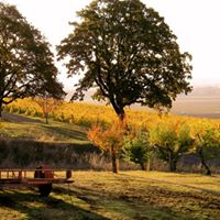 Wine Country Thanksgiving