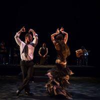 Fandango Sizzling Flamenco