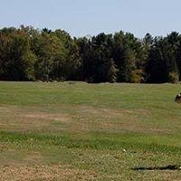 Temple Academy Golf Scramble