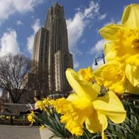 TA Services at the University of Pittsburgh