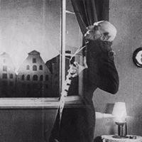 Proiecii Nosferatu n curtea de onoare a MNAR