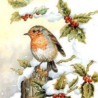 Ed  quasi Natale - Il caff letterario dell Hortus Animae