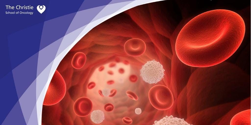 Introduction to Haematology Care
