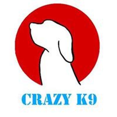 Crazy K9 Fun dog shows